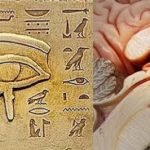 Pineal gland Eye of Rha