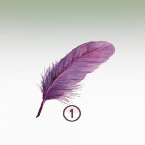 Feather 1 - RESILIENCE