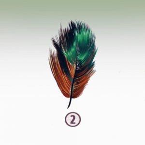 Feather 2 - CREATIVITY