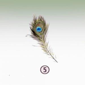 Feather 5 - EMPATHY