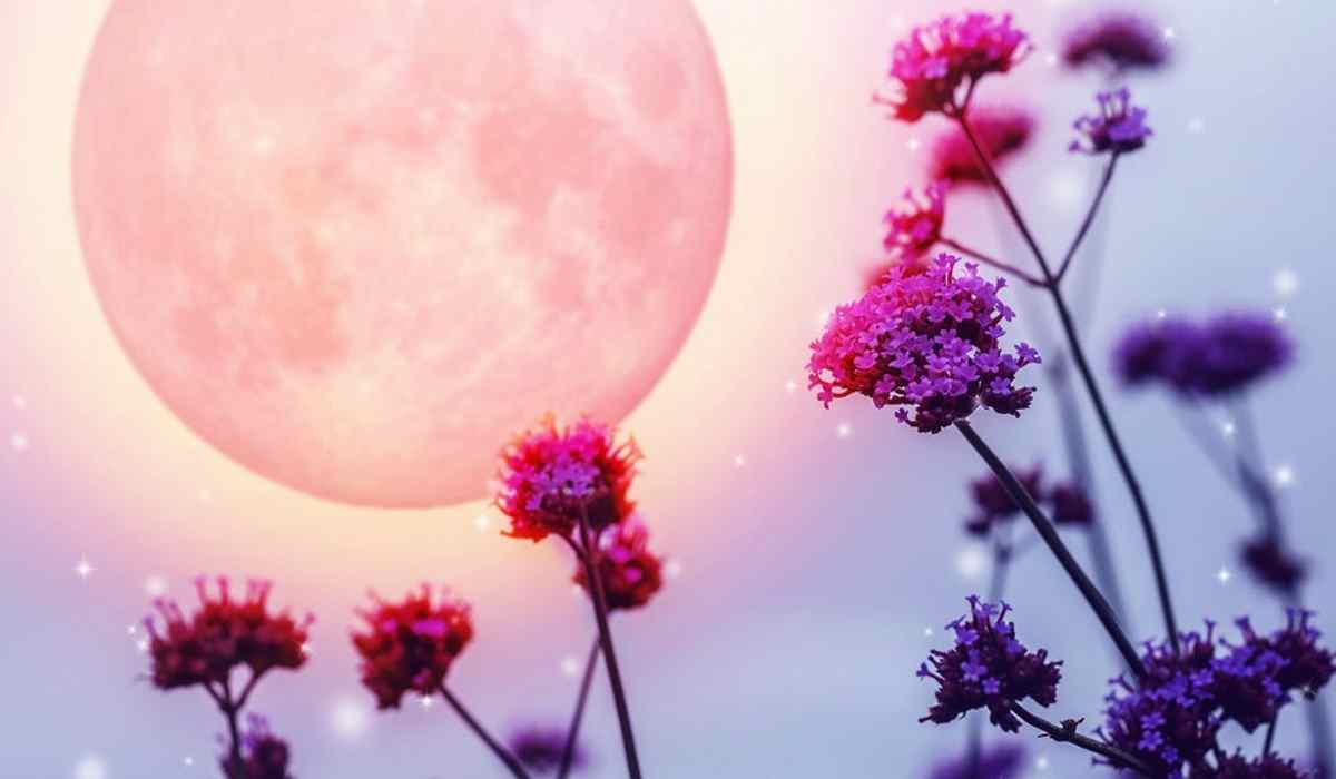 How the Full Moon of May 2019 will Affect You, According to Your Zodiac Sign