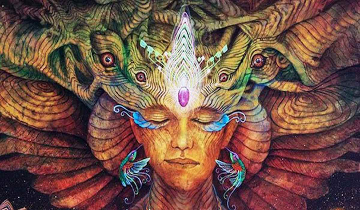 5 Signs that You Are a Shaman and You Haven't Realized it