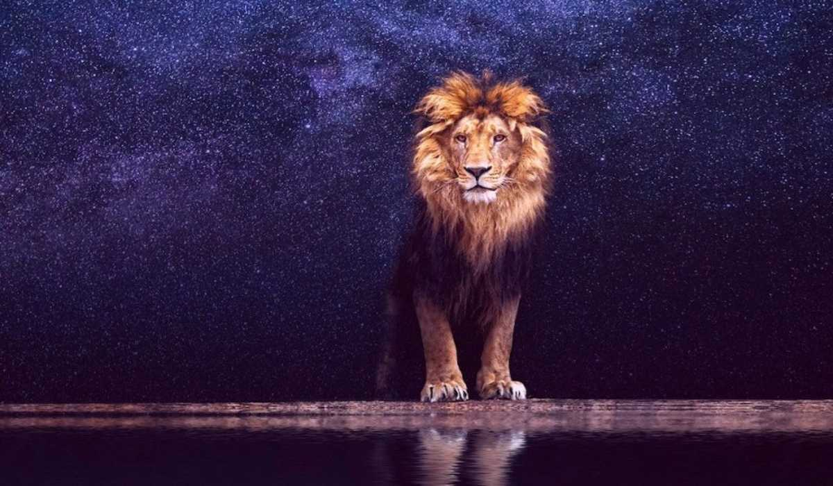 6 Zodiac Signs that the 2019 Leo Season Will Affect the Most
