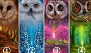 Choose an Owl and Reveal Hidden Things About Your Personality and Your Happiness