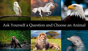 Ask Yourself a Question and Choose an Animal – It Will Give You the Answer You are Looking for