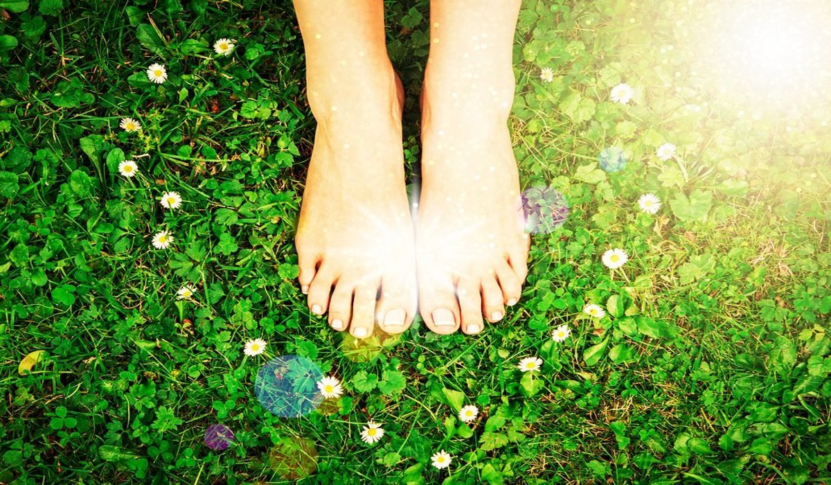 7 Incredible Benefits of a Constant Rooting Practice to Mother Earth