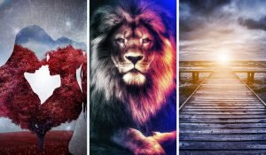 Choose One of the Images and Receive a Powerful Message for Your Life!