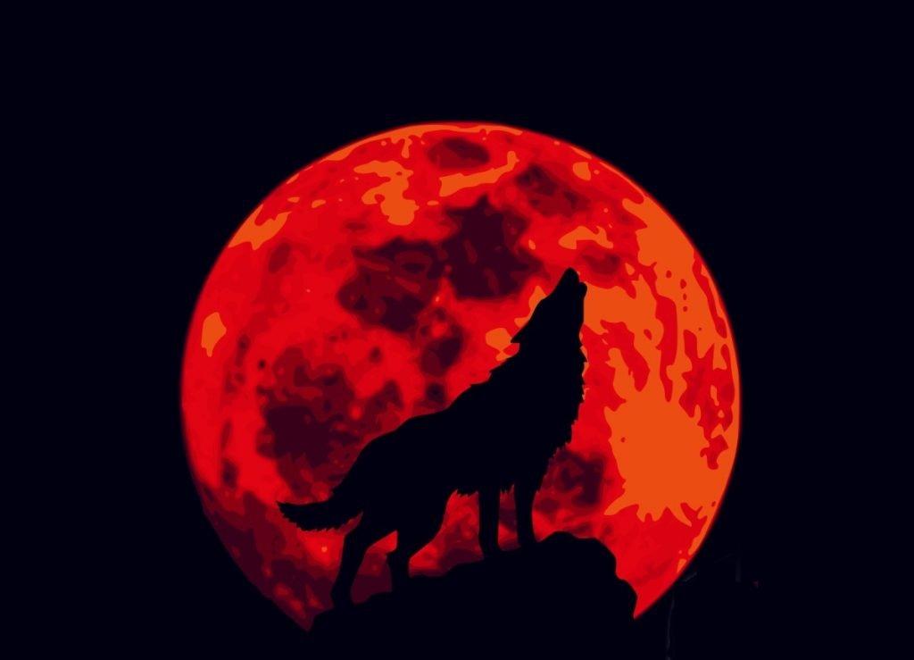 Tomorrow's Full Wolf Moon