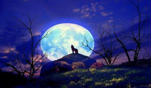 Tomorrow's Full Wolf Moon / Lunar Eclipse – Allow the Universe to Guide You