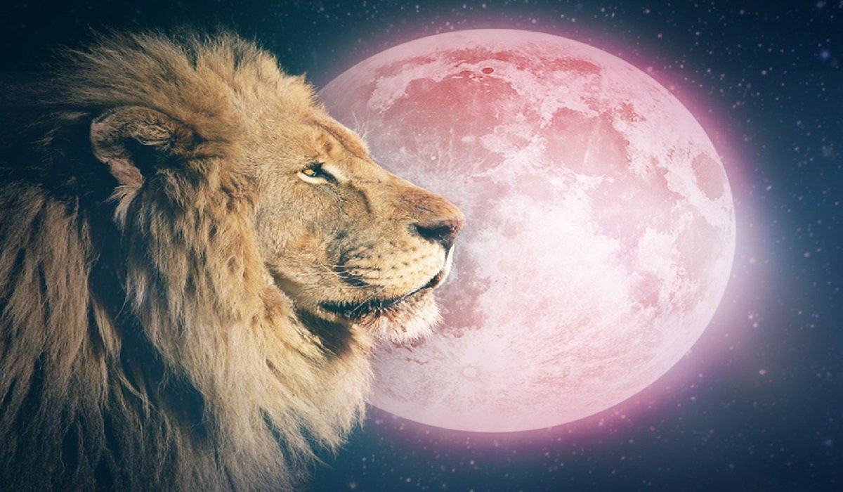 Full Moon in Leo on February 9, 2020 – Embrace the Path You were Meant to Travel