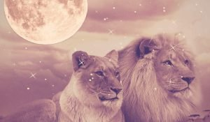 Tomorrow's Full Moon in Leo – Will Give Us the Boost We so Badly Want