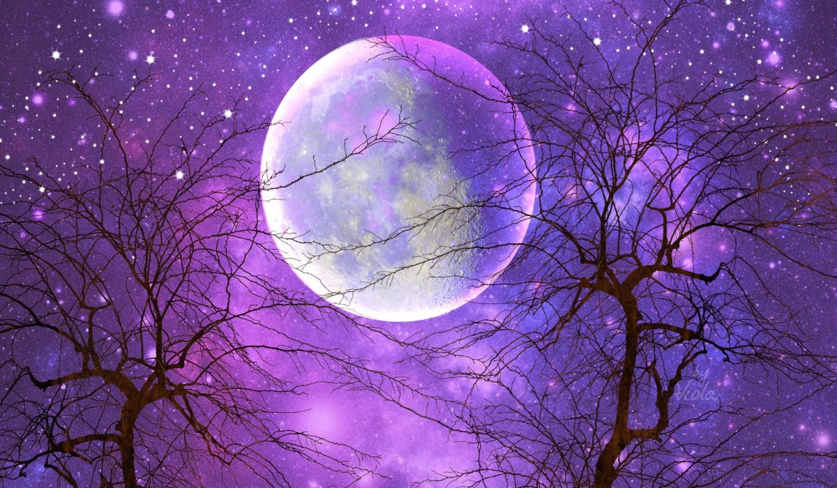 Tonight's Pink Full Moon in Libra Brings Major Energetic Shift And Balance