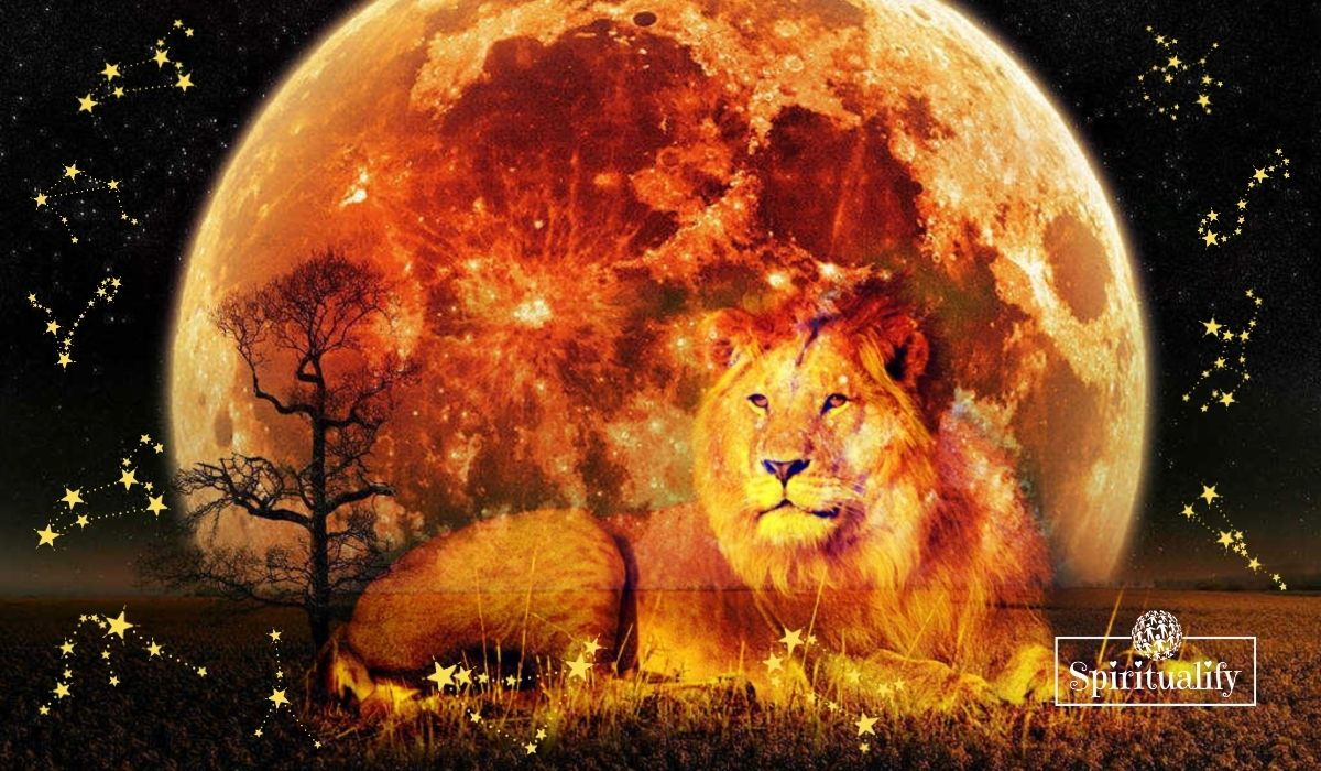 These 3 Zodiac Signs will Experience the Best New Moon in Leo August 2020