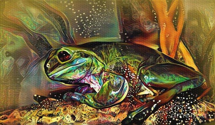 Saturday: Frog
