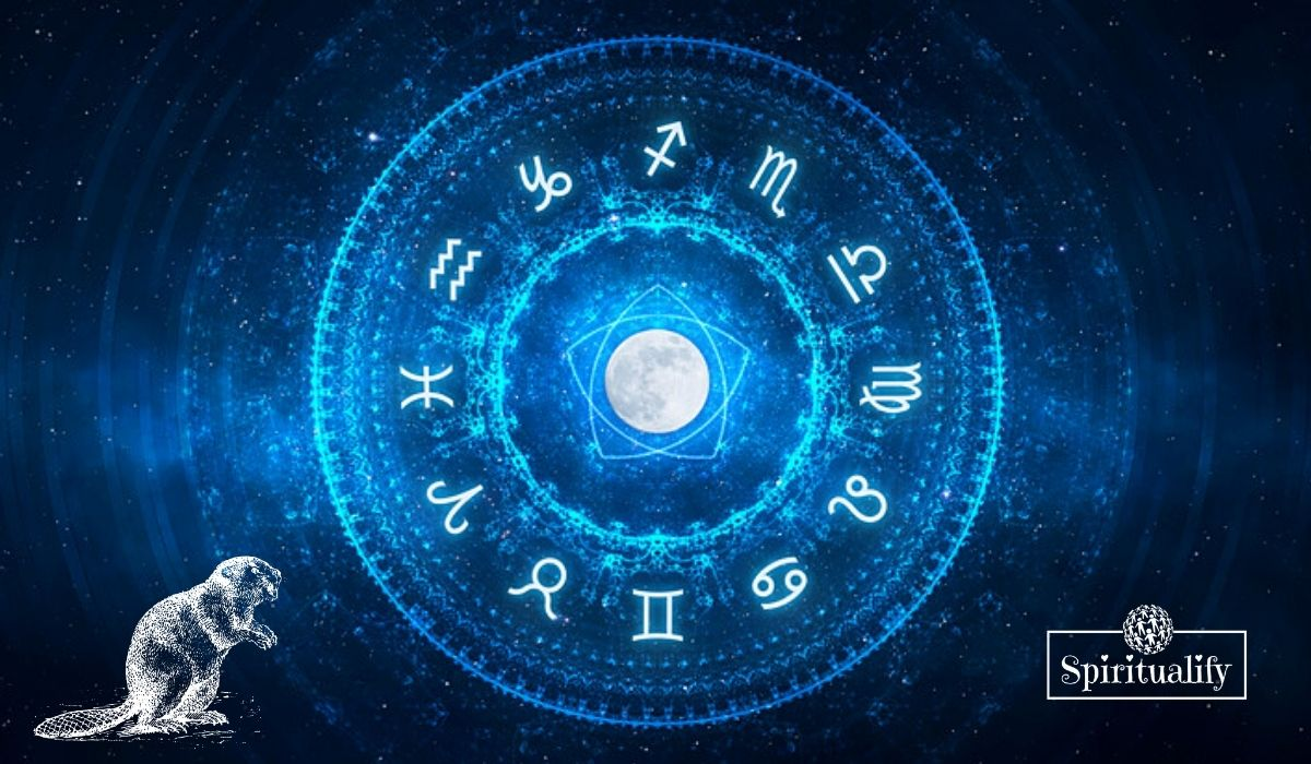 How the Full Moon in Gemini November 30, Will Affect Your Zodiac Sign