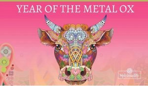 Chinese New Year Starts on February 12th. The Year of the Metal Ox