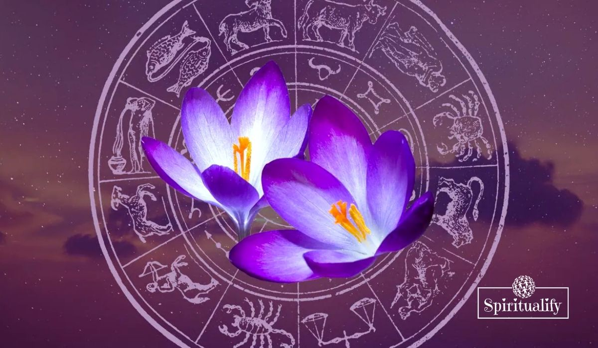 These 3 Zodiac Signs Will Have a Challenging Spring Equinox 2021